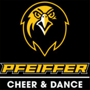 Cheer & Dance Decal